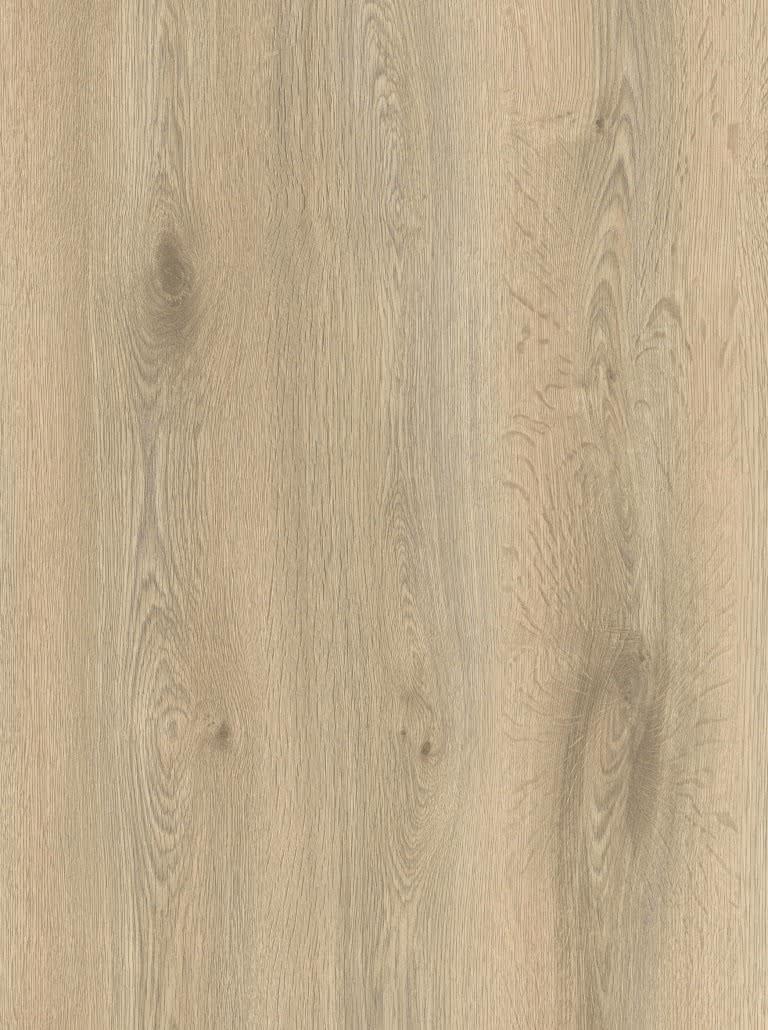 Дуб пустинный (LG 153) Legna