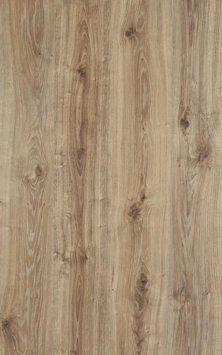 Texton oak (MD 187) Modern