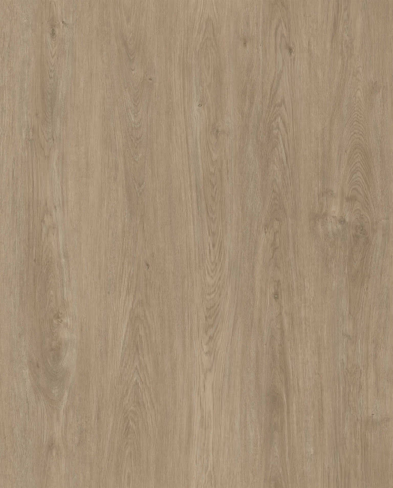 Grand oak (PG 317) Prestige V4